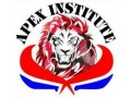 Details : APEX INSTITUTE OF EDUCATION™